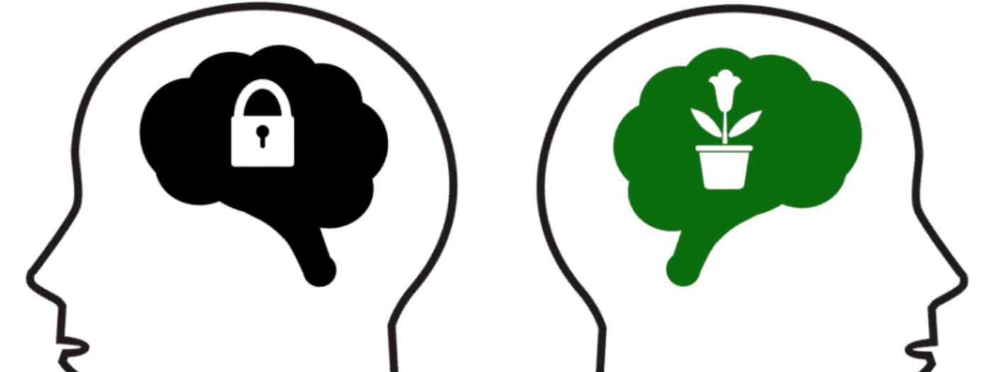 fix fejlődő gondolkodásmód agy elme